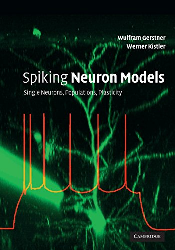 Spiking Neuron Models: Single Neurons, Populations, Plasticity (Neurons Model compare prices)
