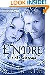 Endre (Elsker Saga Book 2)