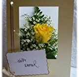 Yellow Rose fresh flower card by post