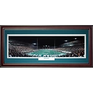 Michigan State Spartans (End Zone) Deluxe Framed Panoramic Photo by PalmBeachAutographs.com