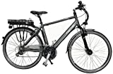 Fischer Herren E-Bike Trekking Proline, anthrazit, Rahmenhhe: 50 cm, Reifengre: 28 Zoll (71 cm), 18008