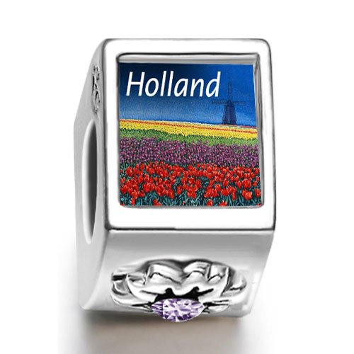 Soufeel Travel Holland February birthstone Photo Flower European Charm Bead Bracelets