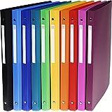 Exacompta 51299E Ringbuch (PP 500µ, 4 Ringe, Rücken 20 mm, blickdicht, DIN A4) zufällige Farbe