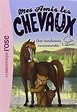 Mes amis les chevaux Sophie Thalmann 05 - Une randonnée mouvementée