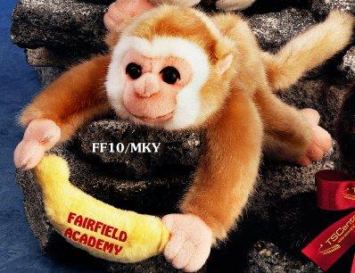 """Floppy Family 10"""" Monkey"""