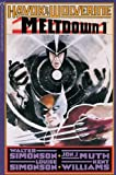 img - for Havok & Wolverine: Meltdown Volume 1 book / textbook / text book