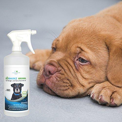 Produit nettoyant et eliminateur d 39 odeur bio pour chiens ecosharkz animal spray d sodorisant - Produit pour empecher les chiens d uriner ...