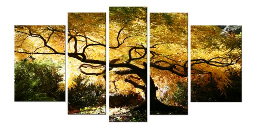 startonight-canvas-wall-art-maple-tree-fantastic-trees-usa-design-for-home-decor-dual-view-surprise-
