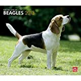 (12x14) Beagles, For The Love Of - 2013 Deluxe Wall Calendar