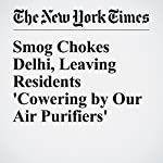 Smog Chokes Delhi, Leaving Residents 'Cowering by Our Air Purifiers' | Ellen Barry