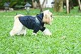 Doggy Dolly W200 Jeans Hundejacke mit Kapuze und Kunstfell, dunkelblau, Größe : M -