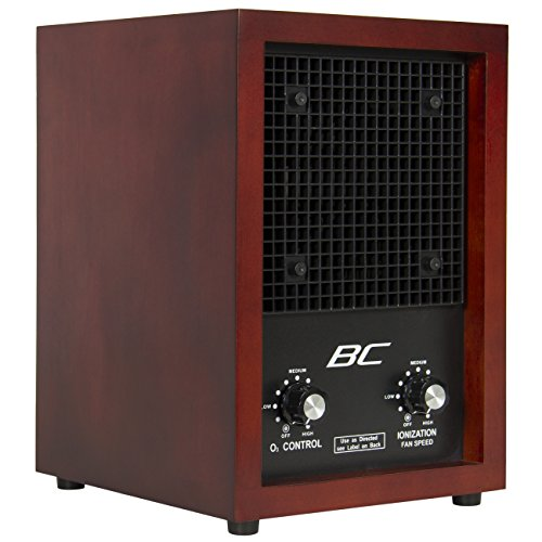 Best Choice Products SKY1057 Ionic Air Purifier/Ozone Ionizer (Best Purifier compare prices)