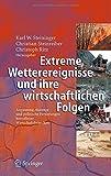 Extreme Wetterereignisse und ihre wirtschaftlichen Folgen: Anpassung, Auswege und politische Forderungen betroffener Wirtschaftsbranchen (German Edition)