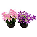 Thefancymart Desktop set of 2 artificial Lilly Flower arrangement with wood pot for decoration