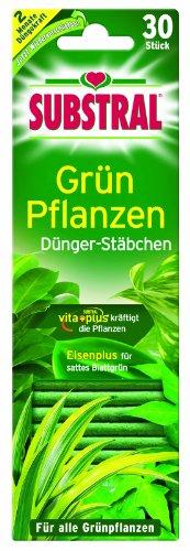 substral-batons-dengrais-pour-plantes-vertes-30-st