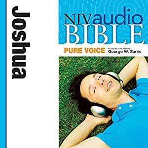 NIV Audio Bible, Pure Voice: Joshua Audiobook
