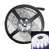 HJL- 500CM 75W 300x5050 SMD LED 3000-3600LM 6000-6500K DC12V IP68 Waterproof Strip Light White (Color: White)