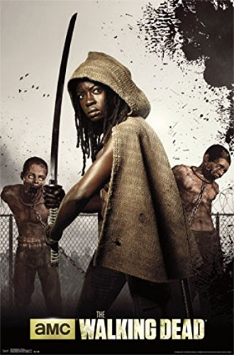 Walking Dead - Michonne Poster Print (22 x 34)