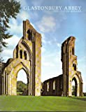 Glastonbury Abbey-the Isle of Avalon