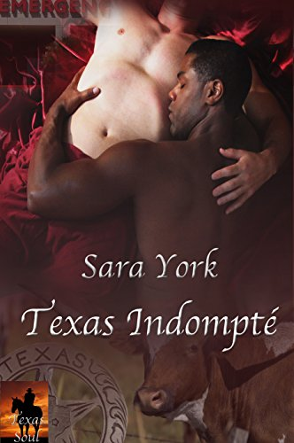 Sara York - TEXAS INDOMPTÉ (Série Texas t. 2)