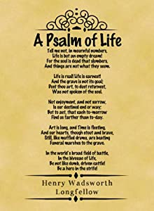 The message of the poem psalm of life?