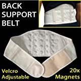 "Magnetic Support Belt - CHOOSE Your Size! - 20 High Quality Magnets for Pain Support and Relief Medium 34""- 40""by GreatIdeas"