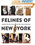Felines of New York: A Glimpse Into t...