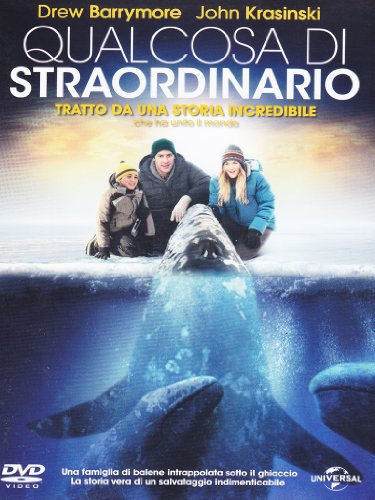 Qualcosa di straordinario [IT Import]