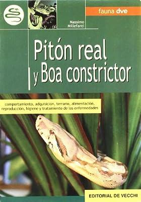 Pitón real y boa constrictor