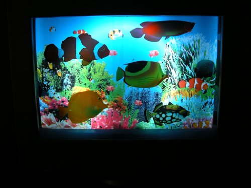 Fake Toy With Moving Fish Aquarium Pictures To Pin On