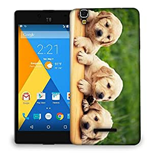Snoogg Lab Babies Designer Protective Back Case Cover For MICROMAX YU YUREKA AO5510