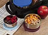 MIRA Set of 3 Stainless Steel lunch box, food storage containers, Multi Color (Blue/Brown)