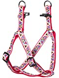 "Kakadu Pet Aztec Nylon Step In Dog Harness, 1/2"" x 16-24"", Red"