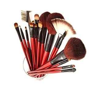 Shany Professional Cosmetic Brush Set with Pouch (Color May Vary), 12 Count