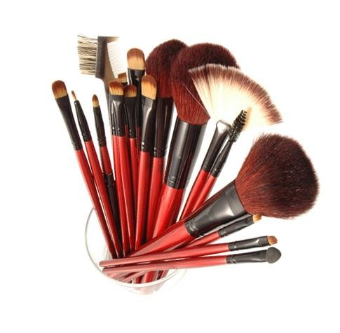 SHANY Cosmetics SHANY Professional 13-Piece Cosmetic Brush Set with Pouch, Set of 12 Brushes and 1 Pouch, Red at Sears.com