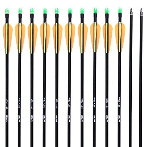 ANTSIR 12Pcs/lot Fiberglass Arrow 30'' inch Archery Hunting Nock Proof Fiberglass Arrow Steel Point 30-80lbs For Recuve & Compound Bow (Target Arrows For Recurve Bow compare prices)