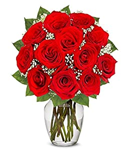 Valentine's Day Flowers - One Dozen Long Stemmed Red Roses (FREE Vase Included)