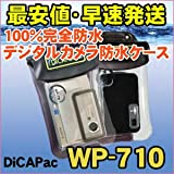 DicAPac WP710