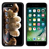 MSD Premium Apple iphone 7 Plus Aluminum Backplate Bumper Snap Case IMAGE ID: 35031862 close up small fluffy chickens on a dark studio