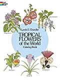 img - for Tropical Flowers of the World Coloring Book (Dover Nature Coloring Book) by Lynda E. Chandler (2-Jan-2000) Paperback book / textbook / text book