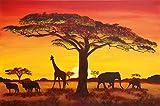 Papel pintado fotogr�fico, Puesta del Sol en �frica - African Sunset - Imagen mural Safari en �frica - decoraci�n mural XXL