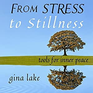 From Stress to Stillness Audiobook