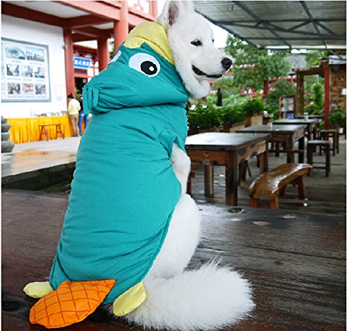 cartoon-platypus-modeling-pet-transfiguration-coat-samoyed-dog-golden-retriever-labrador-retriever-c