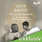 Wut ist ein Geschenk | Arun Gandhi
