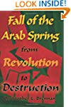 Fall of the Arab Spring: From Revolut...