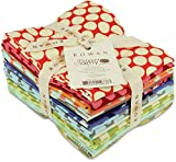 Timeless Fabrics Forever Amy Butler Fat Quarters, 18 by 21-Inch