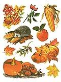 Fensterbild Set 10-tlg. Herbstfrüchte Kürbis Igel Hagebutte Zweig Blätter Laub