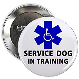 SERVICE DOG IN TRAINING Alert 2.25 Pinback Button Badge