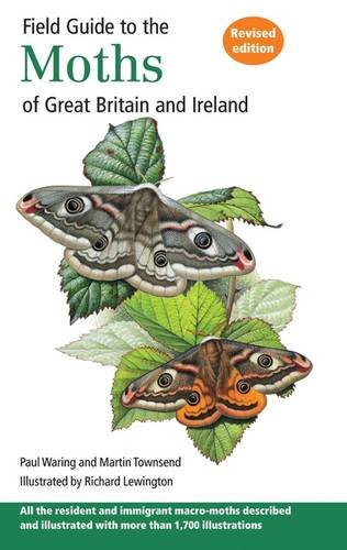 field-guide-to-the-moths-of-great-britain-and-ireland