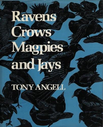 Ravens, Crows, Magpies and Jays, Angell, Tony